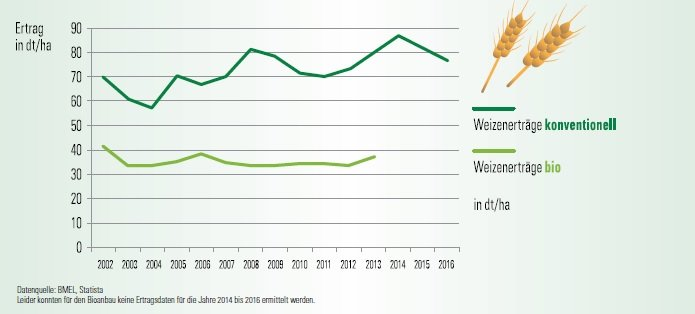 Wheat yield of conventional in comparison to organic production