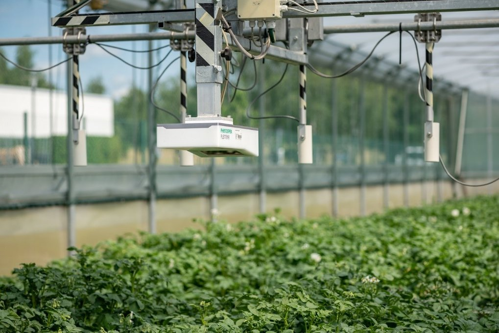 Plant Cultivation and Transformation | Max Planck Institute