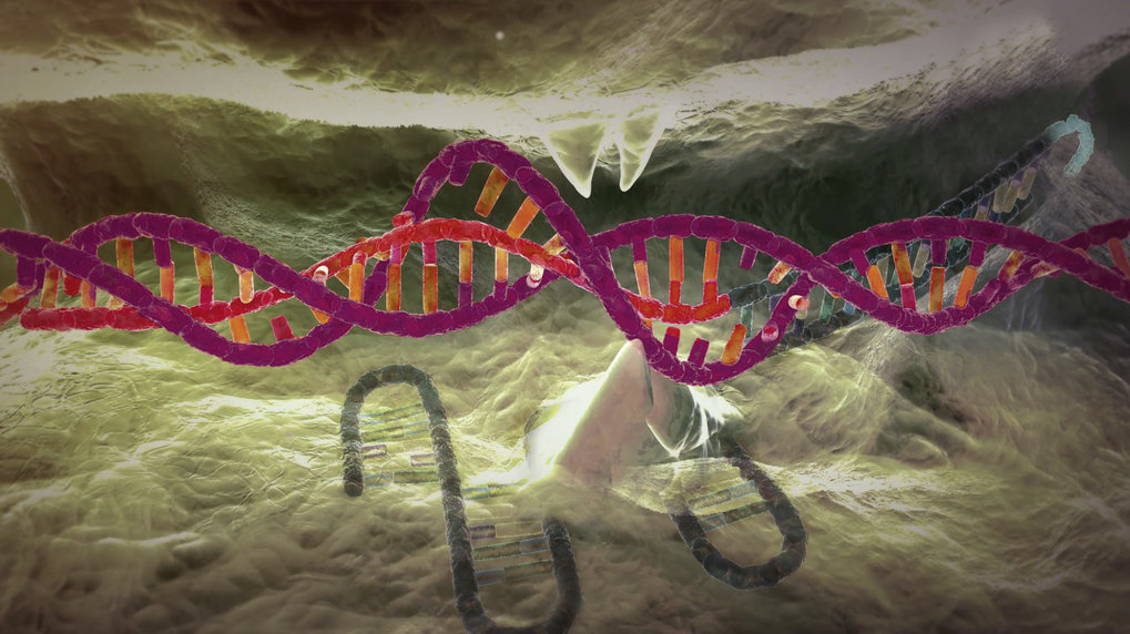 Scientists reject altering human germline at the present time