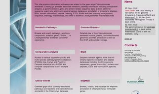 ChlamyCyc is an integrative systems biology database and web-portal for Chlamydomonas reinhardtii.<b> </b>It provides extensive metabolic pathway information including comparative analysis, a genome browser, gene and protein-related sequence data, a Blast server for sequence search and alignments against various databases, annotation of proteins to MapMan BINs, domain information, peptide covering, ESTs, RNAs and their mapping onto genomic sequence, orthology relationships, and links to external Chlamydomonas-related resources.